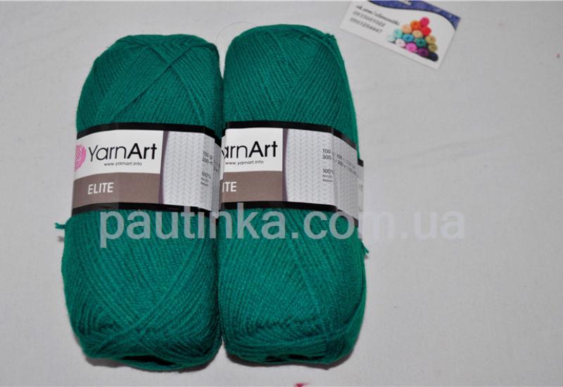 pautinka-priazha (206)