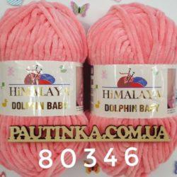 Himalaya Dolphin Baby (Долфин Беби Хималая) - 80346 роза